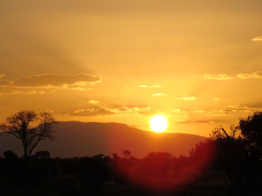 coucher-soleil-savanne